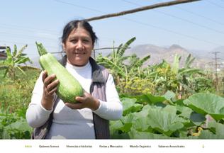 Website agriculturaorganica.pe desktop preview