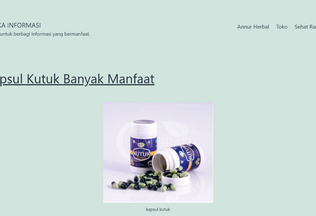 Website anekainformasi.my.id desktop preview