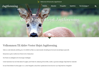 Website avh.dk desktop preview