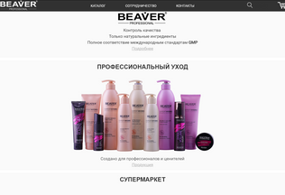 Website beaverprofessional.ru desktop preview
