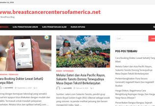 Website breastcancercentersofamerica.net desktop preview
