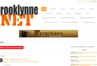 Website brooklynne.net desktop preview