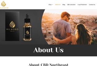 Website cbdnortheast.co.uk desktop preview