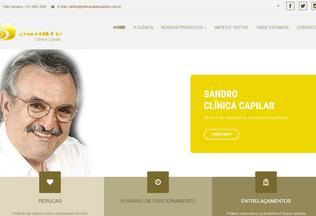 Website clinicacapilarsandro.com.br desktop preview
