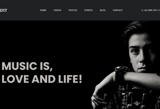 Website d1t.com desktop preview