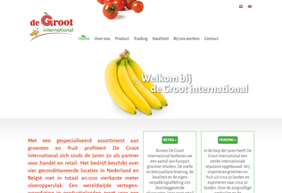 Website degroot-int.nl desktop preview