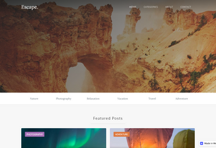 Website dentplusvn.webflow.io desktop preview