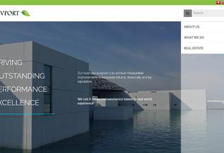 Website devport.asia desktop preview