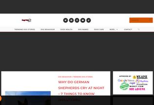 Website dogsvets.com desktop preview