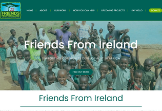 Website friendsfromireland.ie desktop preview