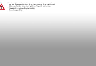 Website henastoibande.de desktop preview