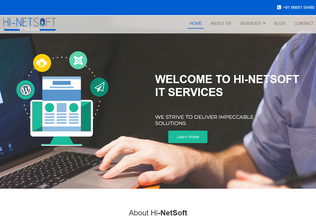 Website hinetsoft.in desktop preview