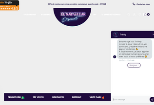 Website levapoteur-discount.fr desktop preview