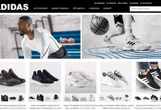 Website mastermindholidays.in desktop preview