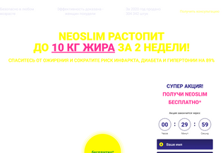 Website neoslimburn.ru desktop preview