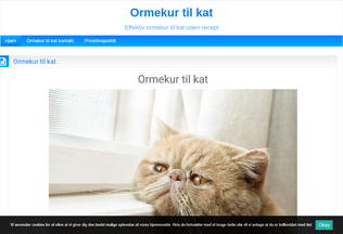 Website ormekurtilkat.cf desktop preview