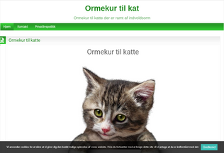 Website ormekurtilkat.ga desktop preview