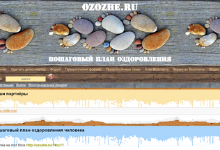 Website ozozhe.ru desktop preview