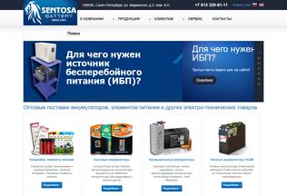 Website parking-system.ru desktop preview