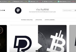 Website paypdm.info desktop preview