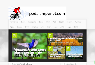 Website pedalampenet.com desktop preview