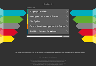 Website pixelbird.in desktop preview