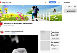 Website polonsil.ru desktop preview