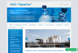 Website promgasnovosib.ru desktop preview