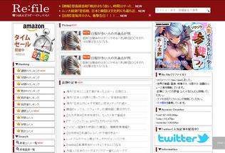 Website re-file.com desktop preview