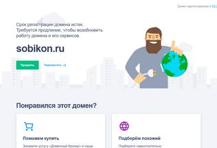 Website sobikon.ru desktop preview