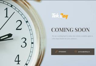 Website tekboy.in desktop preview