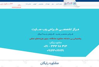 Website tgsh.ir desktop preview