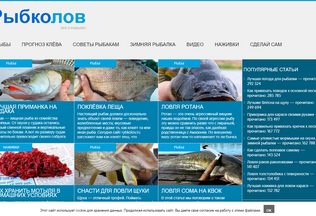 Website ulfish.ru desktop preview