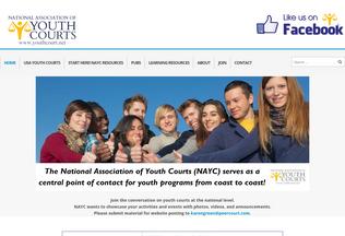 Website youthcourt.net desktop preview