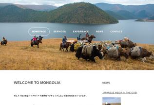 Website zemst.mn desktop preview